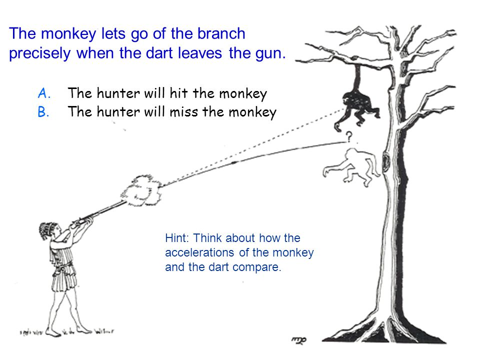 The monkey lets go of the branch precisely when the dart leaves the gun.