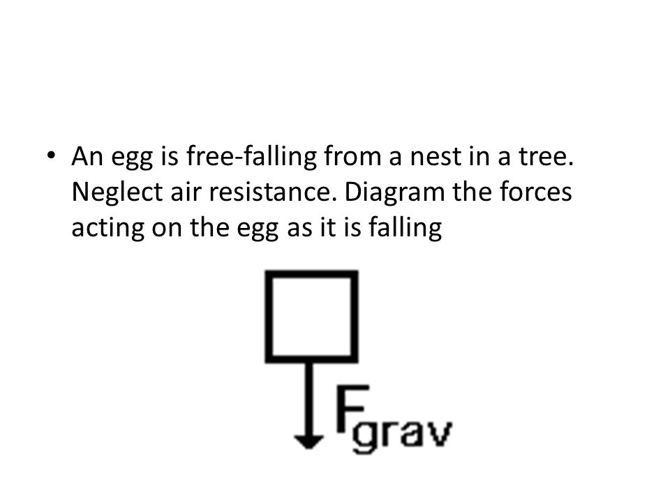 An egg is free-falling from a nest in a tree. Neglect air resistance. Diagram the forces acting on the egg as it is falling