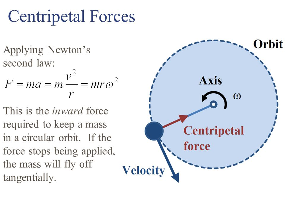 Centripetal Forces Applying Newton's second law: This is the inward force required to keep a mass in a circular orbit.