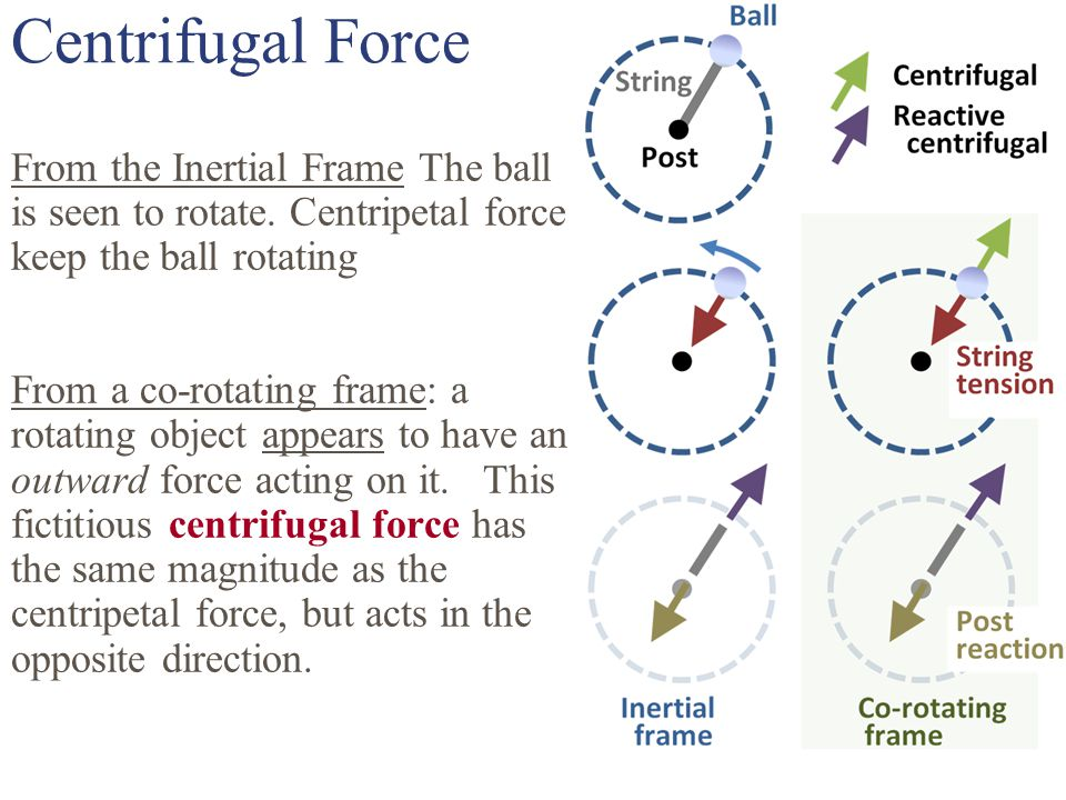 Centrifugal Force From the Inertial Frame The ball is seen to rotate.