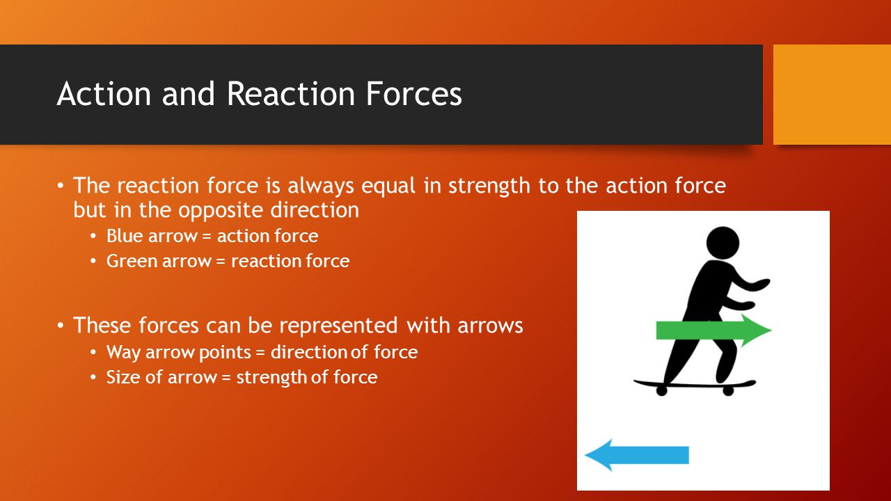 Action and Reaction Forces The reaction force is always equal in strength to the action force but in the opposite direction Blue arrow = action force Green arrow = reaction force These forces can be represented with arrows Way arrow points = direction of force Size of arrow = strength of force