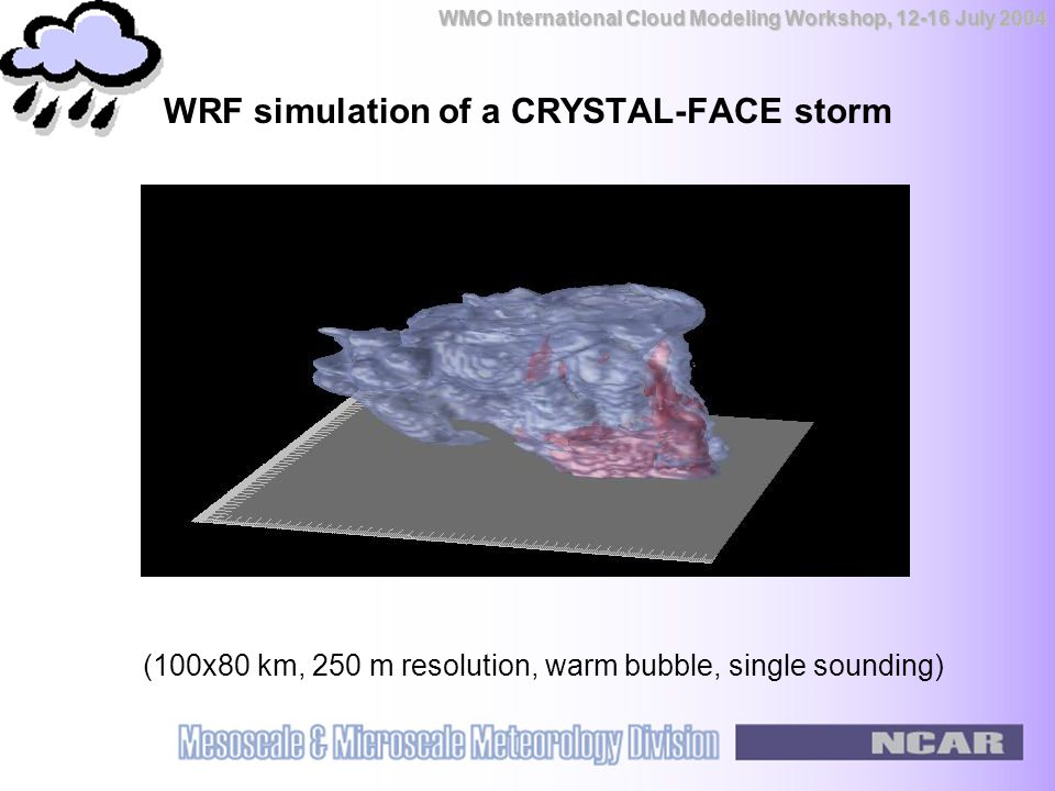 WMO International Cloud Modeling Workshop, 12-16 July 2004 WRF simulation of a CRYSTAL-FACE storm (100x80 km, 250 m resolution, warm bubble, single sounding)