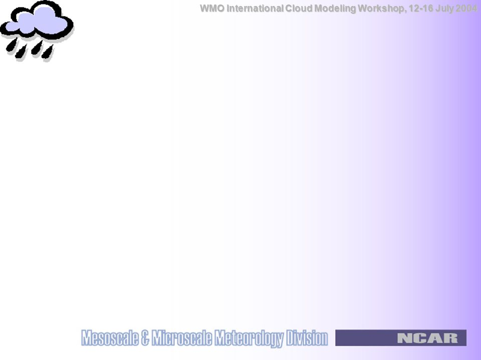 WMO International Cloud Modeling Workshop, 12-16 July 2004