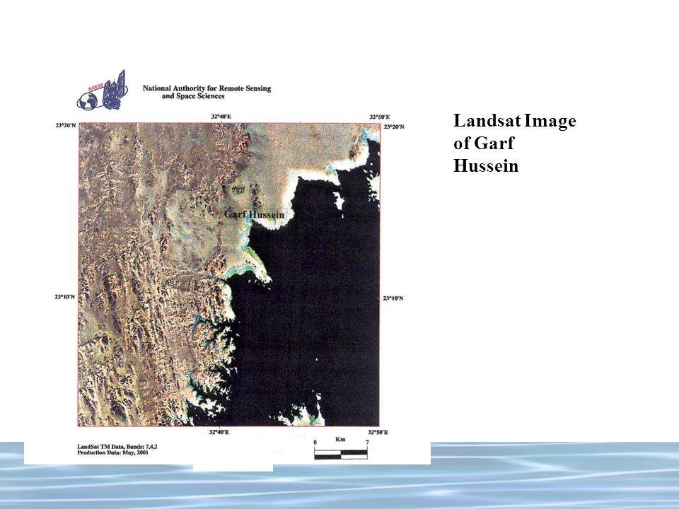 Landsat Image of Garf Hussein