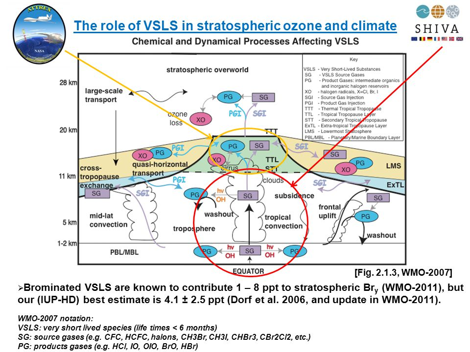 The role of VSLS in stratospheric ozone and climate [Fig. 2.1.3, WMO-2007]  Brominated VSLS are known to contribute 1 – 8 ppt to stratospheric Br y (