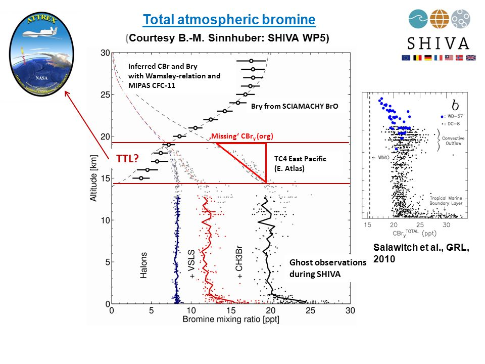 Total atmospheric bromine Ghost observations during SHIVA Inferred CBr and Bry with Wamsley-relation and MIPAS CFC-11 Bry from SCIAMACHY BrO (Courtesy