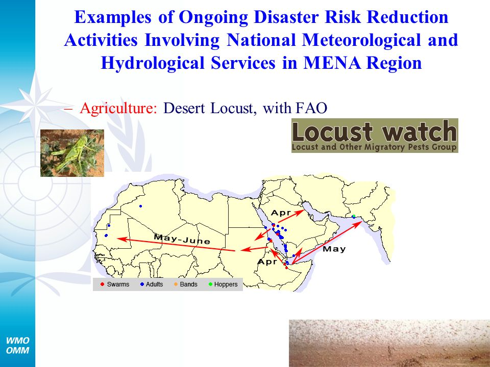 Examples of Ongoing Disaster Risk Reduction Activities Involving National Meteorological and Hydrological Services in MENA Region –Agriculture: Desert