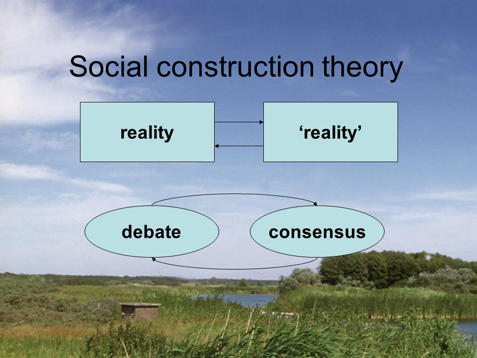 Social construction theory reality'reality' consensusdebate