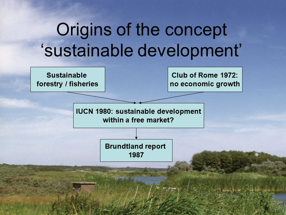 Origins of the concept 'sustainable development' Sustainable forestry / fisheries Club of Rome 1972: no economic growth IUCN 1980: sustainable develop