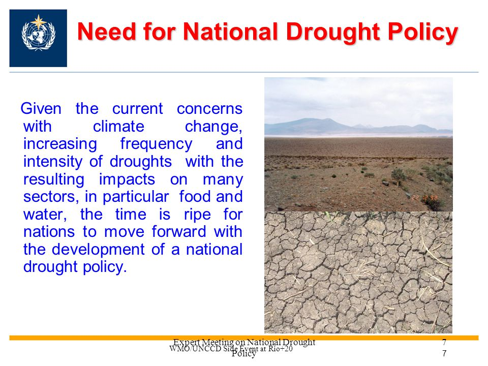 Expert Meeting on National Drought Policy 17 Key conclusions The formulation of effective national drought policies is indeed opportune, given the concern with the increasing frequency and intensity of droughts A compendium on national drought policies & various consultations with governments before the HMNDP will contribute to a global debate on the urgency of national drought policies adoption The HMNDP will provide the opportunity for sustained international dialogue and an intergovernmental declaration on national drought policies WMO/UNCCD Side Event at Rio+20 17