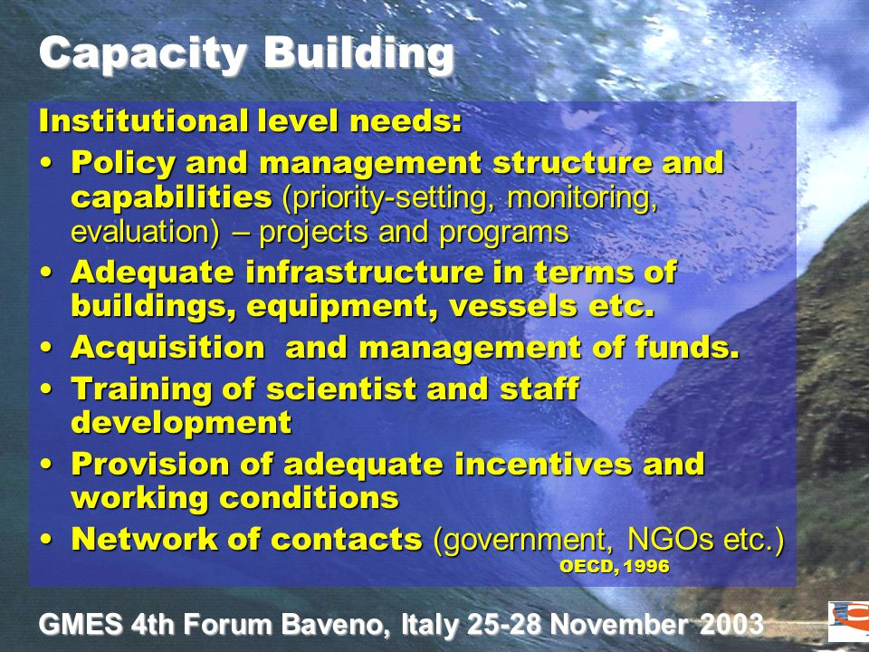 GMES 4th Forum Baveno, Italy 25-28 November 2003 Capacity Building Institutional level needs: Policy and management structure and capabilities (priori
