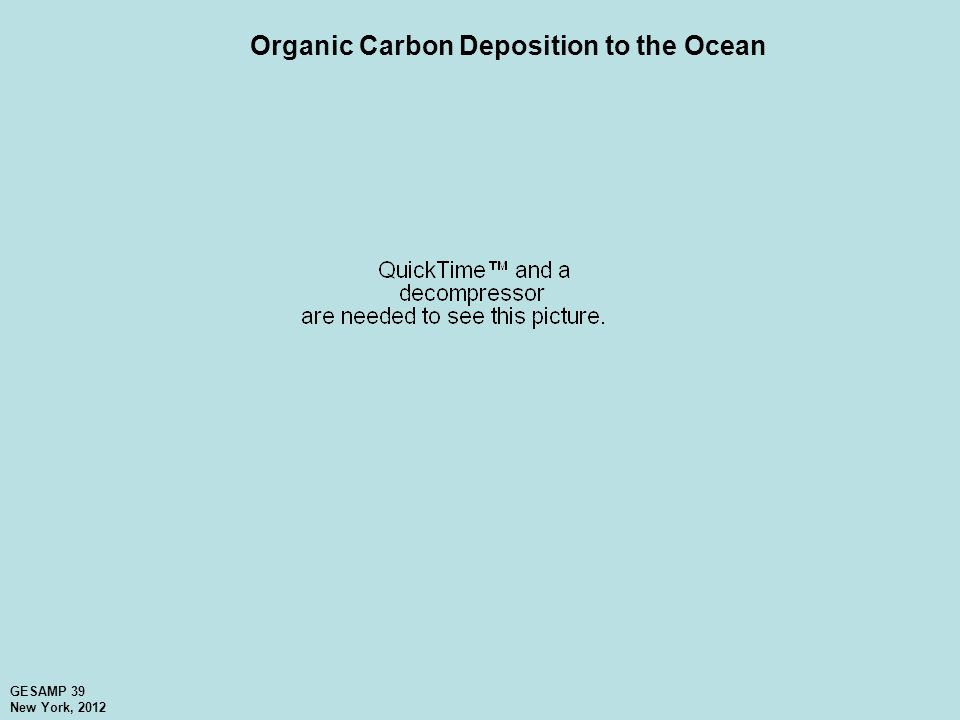 Organic Carbon Deposition to the Ocean GESAMP 39 New York, 2012