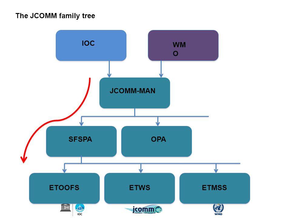 Real-time system IOC WM O JCOMM-MAN SFSPAOPA ETOOFSETWS The JCOMM family tree ETMSS