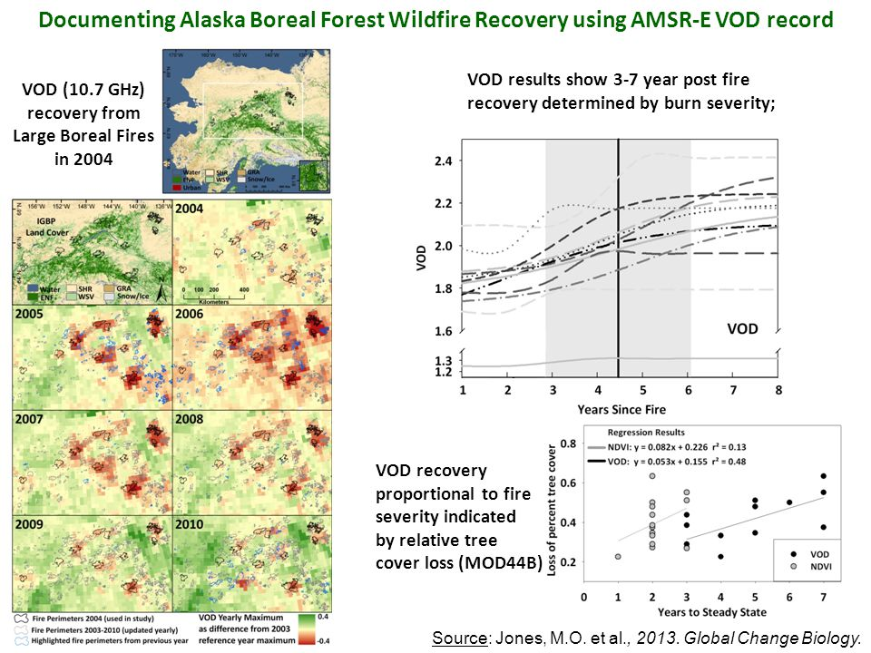 Documenting Alaska Boreal Forest Wildfire Recovery using AMSR-E VOD record VOD (10.7 GHz) recovery from Large Boreal Fires in 2004 Source: Jones, M.O.