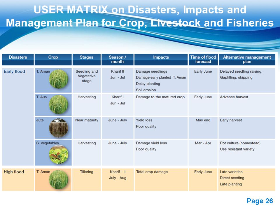 Free Powerpoint Templates Page 26 USER MATRIX on Disasters, Impacts and Management Plan for Crop, Livestock and Fisheries