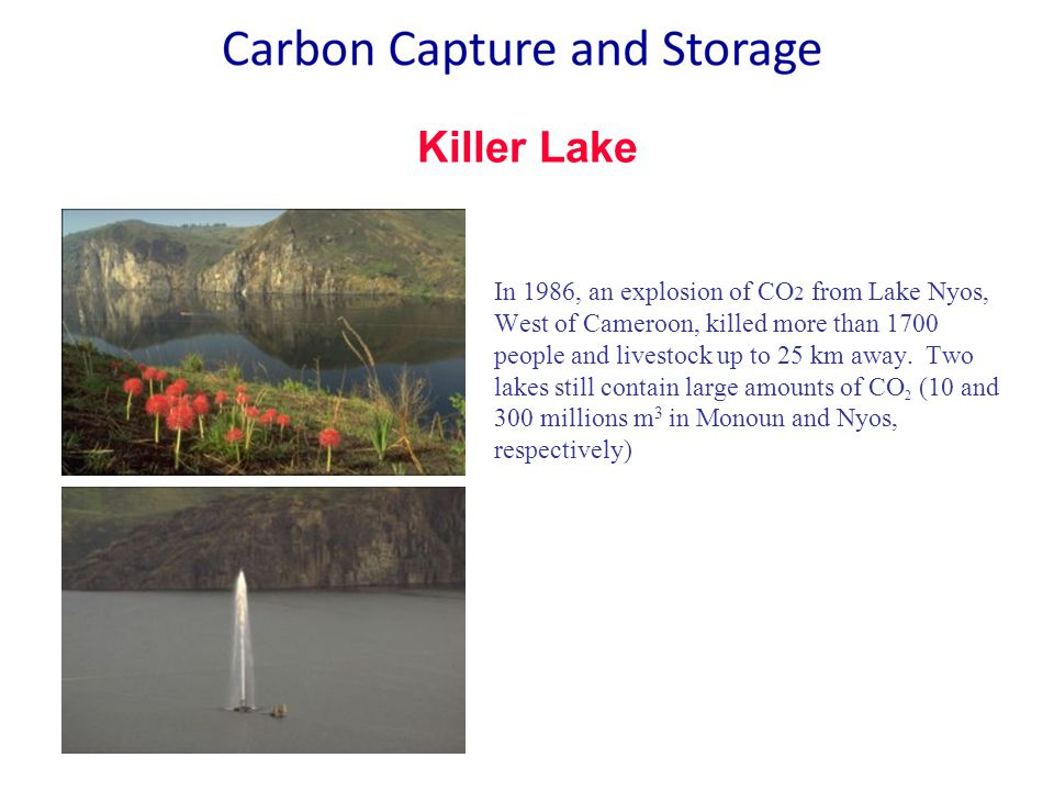 Killer Lake In 1986, an explosion of CO 2 from Lake Nyos, West of Cameroon, killed more than 1700 people and livestock up to 25 km away.