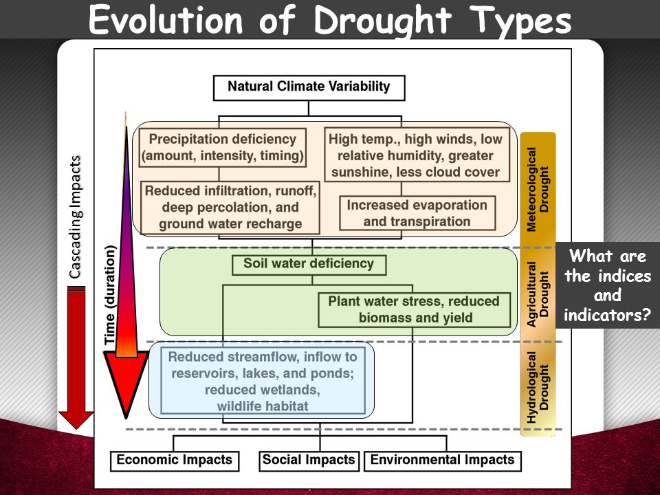 Evolution of Drought Types What are the indices and indicators? Cascading Impacts