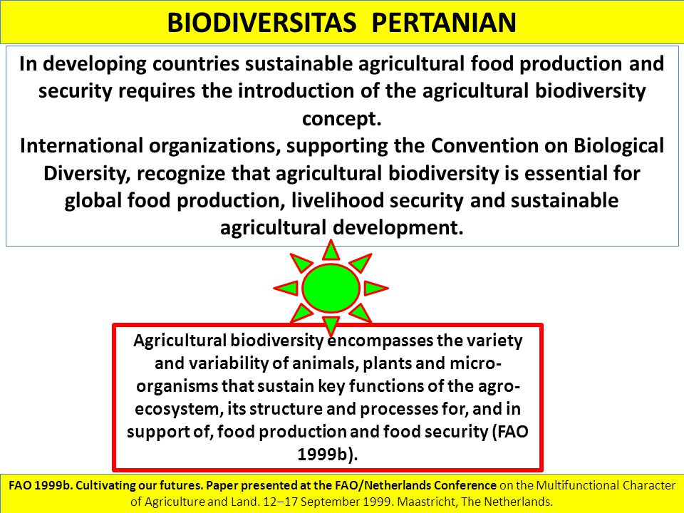BIODIVERSITAS PERTANIAN In developing countries sustainable agricultural food production and security requires the introduction of the agricultural bi