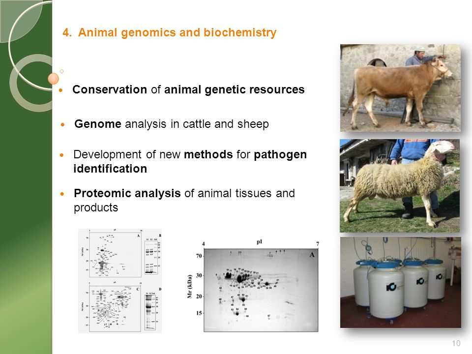 Conservation of animal genetic resources 4.