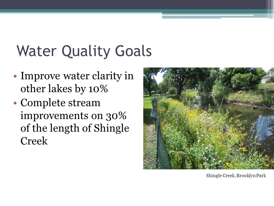 Water Quality Goals Improve water clarity in other lakes by 10% Complete stream improvements on 30% of the length of Shingle Creek Shingle Creek, Brooklyn Park
