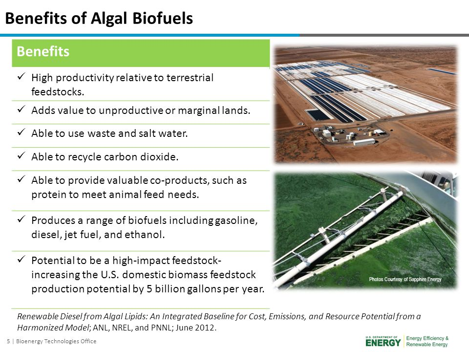 5 | Bioenergy Technologies Office Benefits High productivity relative to terrestrial feedstocks. Adds value to unproductive or marginal lands. Able to