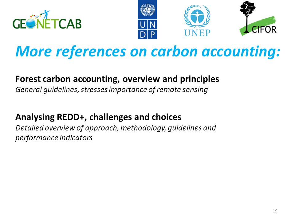 More references on carbon accounting: Forest carbon accounting, overview and principles General guidelines, stresses importance of remote sensing Analysing REDD+, challenges and choices Detailed overview of approach, methodology, guidelines and performance indicators 19