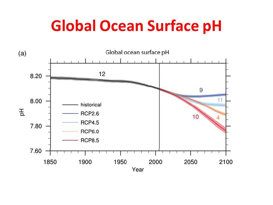 Global Ocean Surface pH