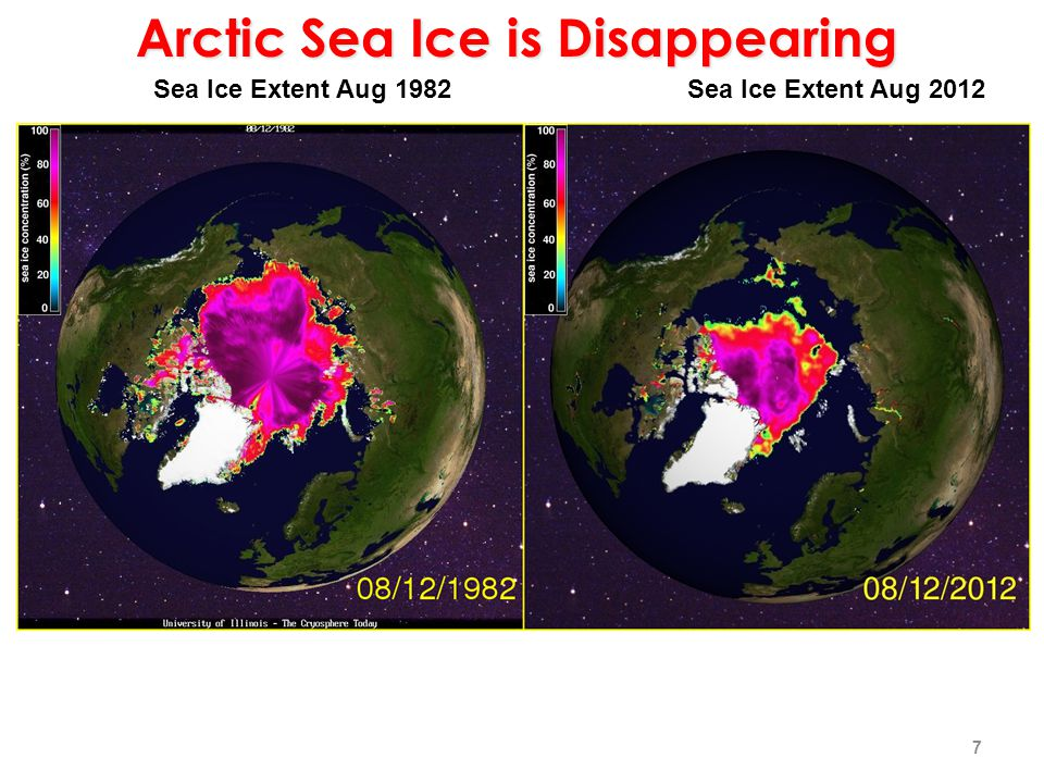 Sea Ice Extent Aug 1982Sea Ice Extent Aug 2012 Arctic Sea Ice is Disappearing 7