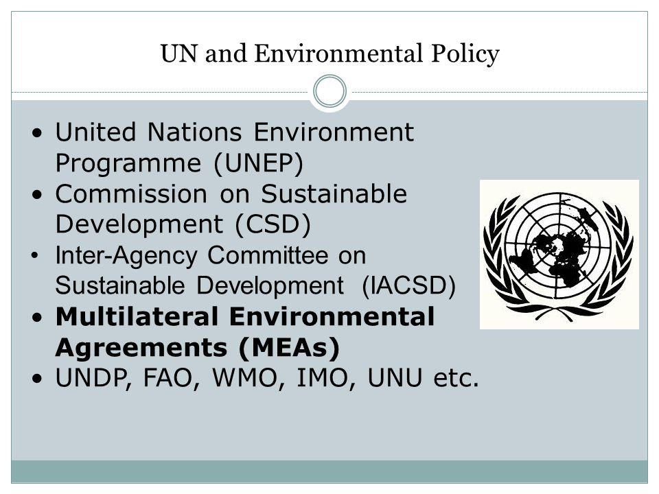 UN and Environmental Policy United Nations Environment Programme (UNEP) Commission on Sustainable Development (CSD) Inter-Agency Committee on Sustaina