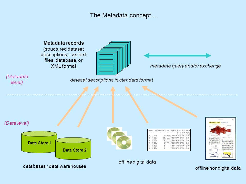some example Metadatabases (Data Directories)...