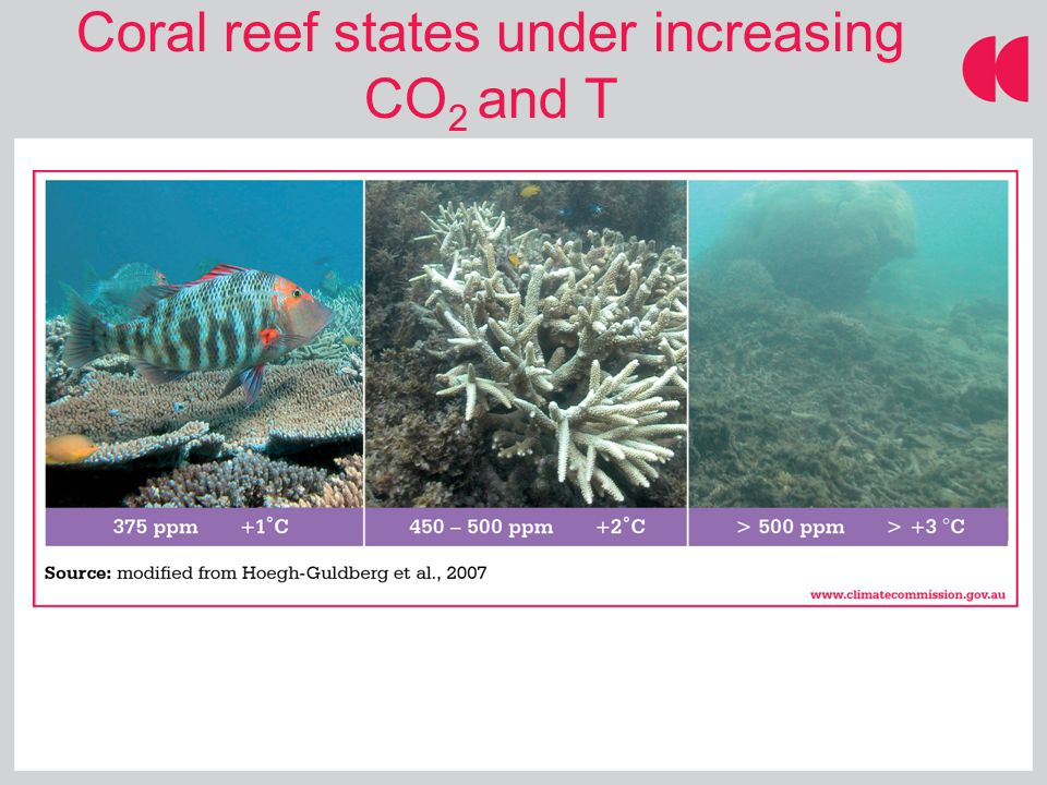 Coral reef states under increasing CO 2 and T