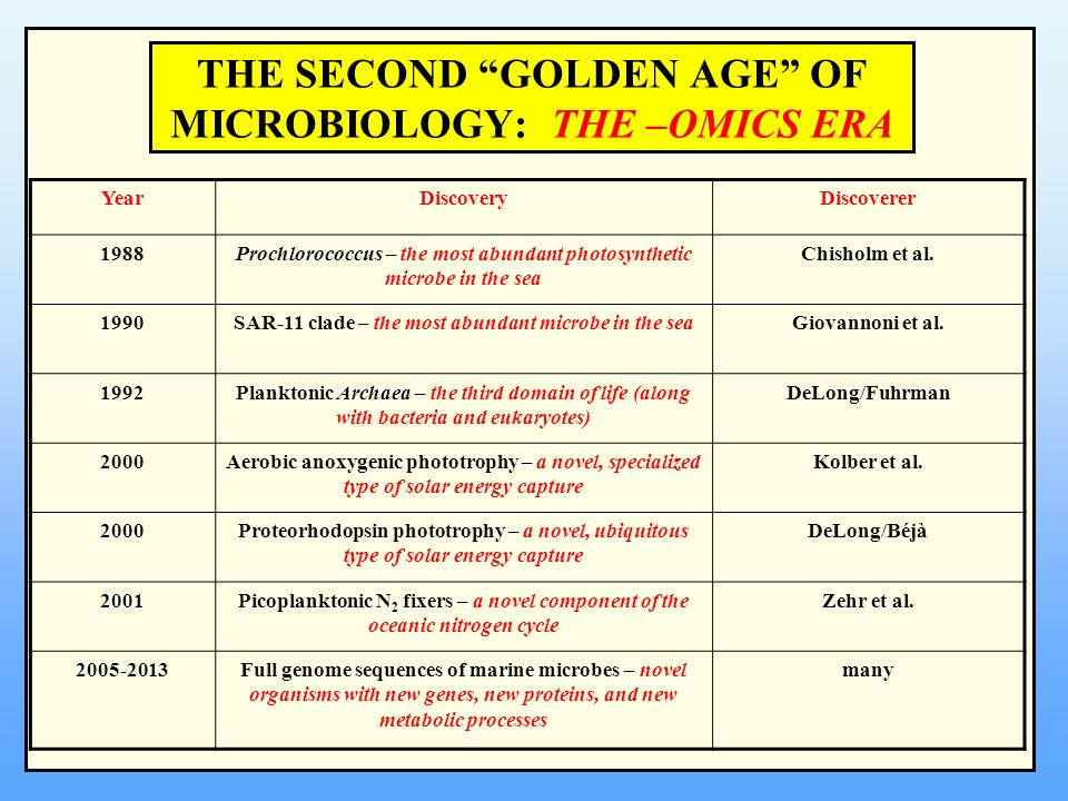 """THE SECOND """"GOLDEN AGE"""" OF MICROBIOLOGY: THE –OMICS ERA YearDiscoveryDiscoverer 1988Prochlorococcus – the most abundant photosynthetic microbe in the"""