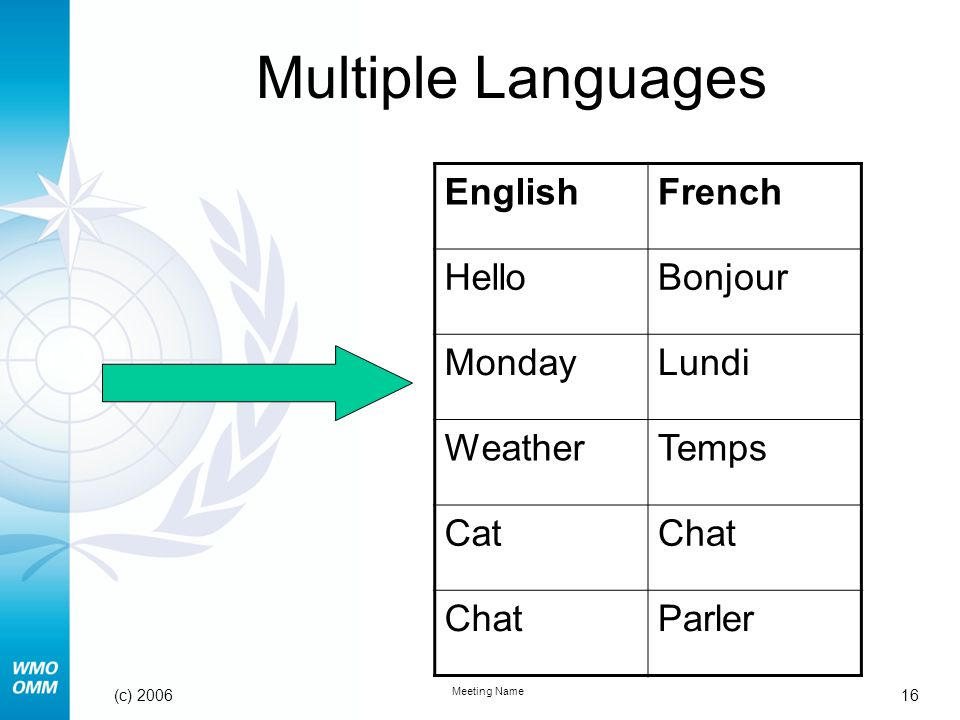 16 Meeting Name (c) 2006 Multiple Languages EnglishFrench HelloBonjour MondayLundi WeatherTemps CatChat Parler