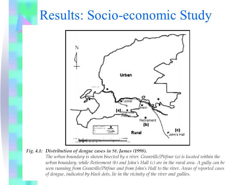 Results: Socio-economic Study