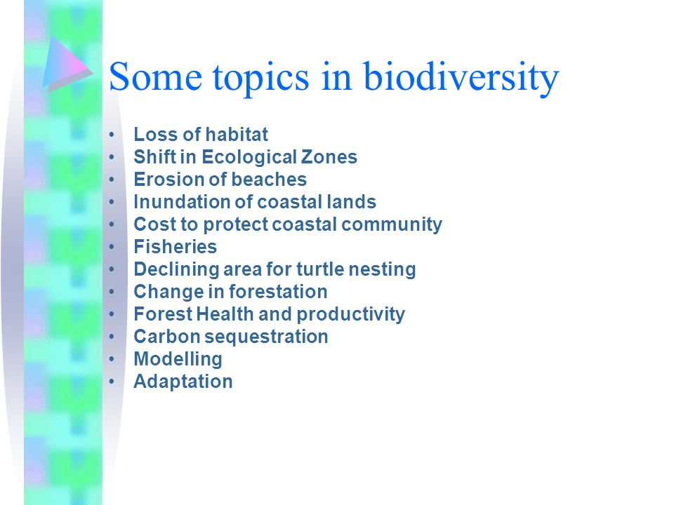 Some topics in biodiversity Loss of habitat Shift in Ecological Zones Erosion of beaches Inundation of coastal lands Cost to protect coastal community Fisheries Declining area for turtle nesting Change in forestation Forest Health and productivity Carbon sequestration Modelling Adaptation