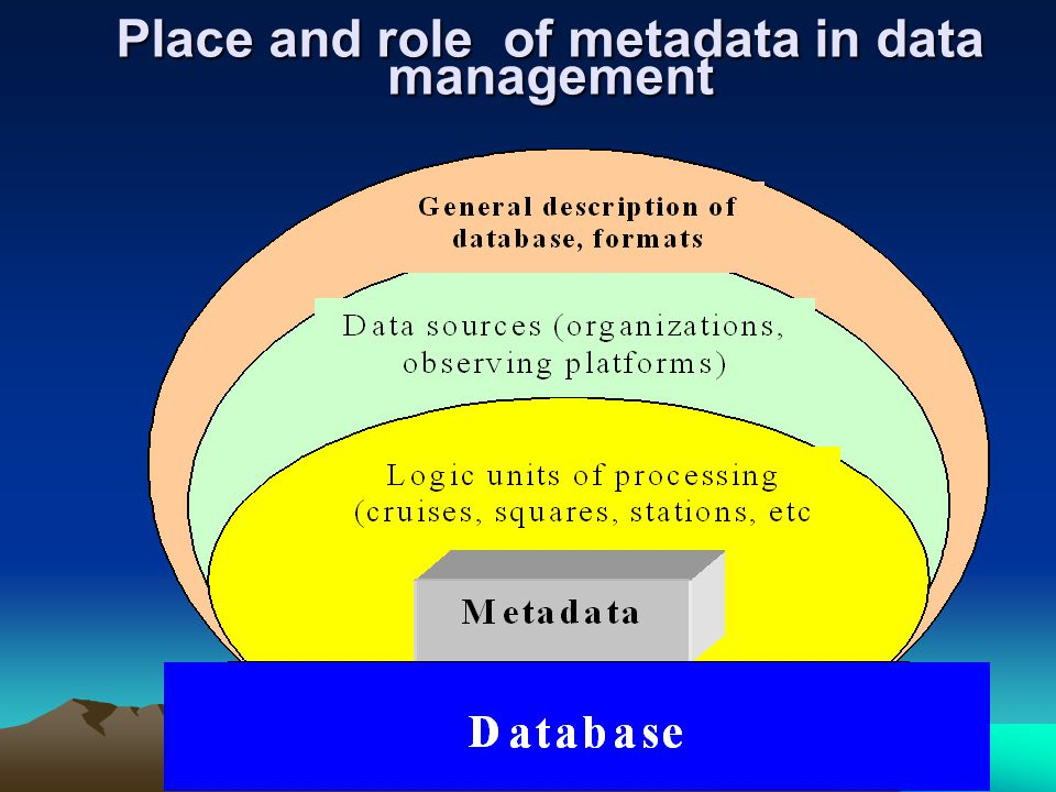Place and role of metadata in data management