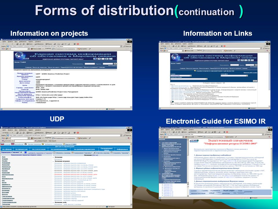 Forms of distribution( continuation ) Information on projectsInformation on Links Electronic Guide for ESIMO IR UDP