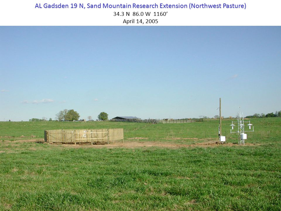 AL Gadsden 19 N, Sand Mountain Research Extension (Northwest Pasture) 34.3 N 86.0 W 1160' April 14, 2005