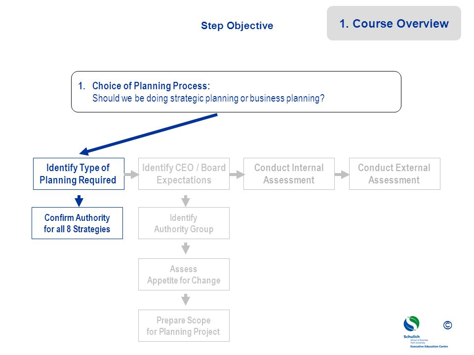©© © Step Objective Confirm Authority for all 8 Strategies Identify Type of Planning Required Identify CEO / Board Expectations Conduct Internal Asses