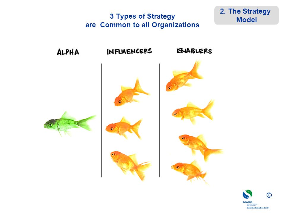 ©© © 3 Types of Strategy are Common to all Organizations 2. The Strategy Model