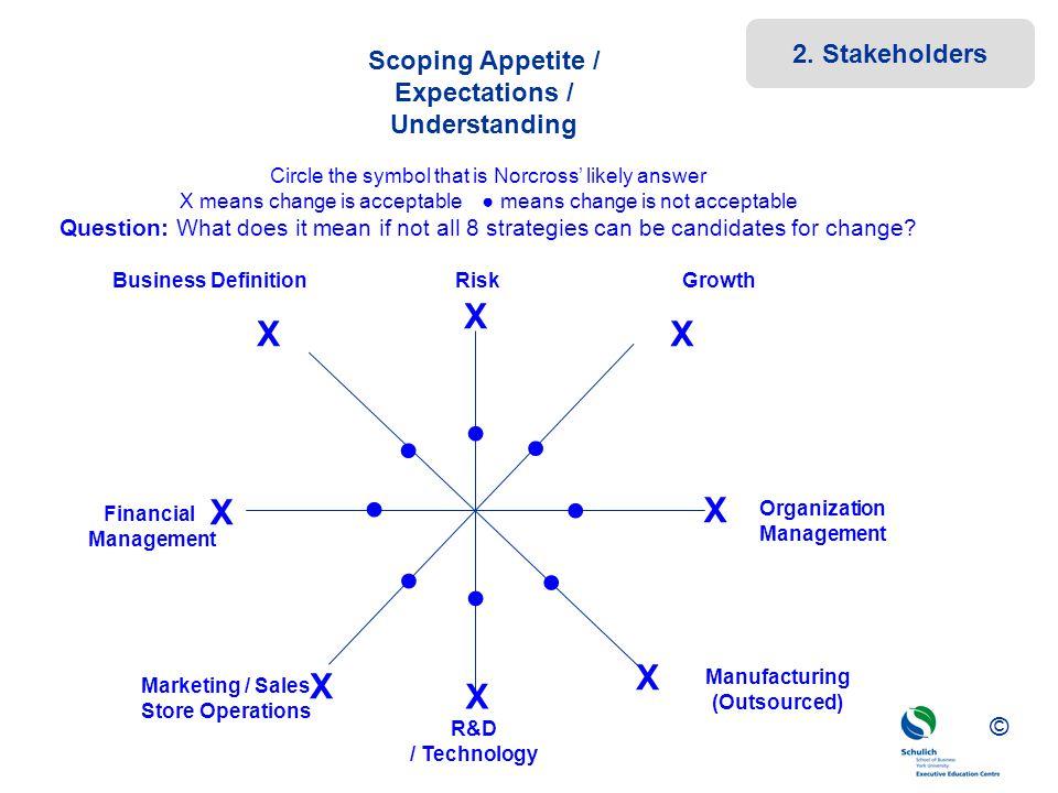 ©© © Scoping Appetite / Expectations / Understanding Business DefinitionRiskGrowth Organization Management Financial Management Marketing / Sales Stor