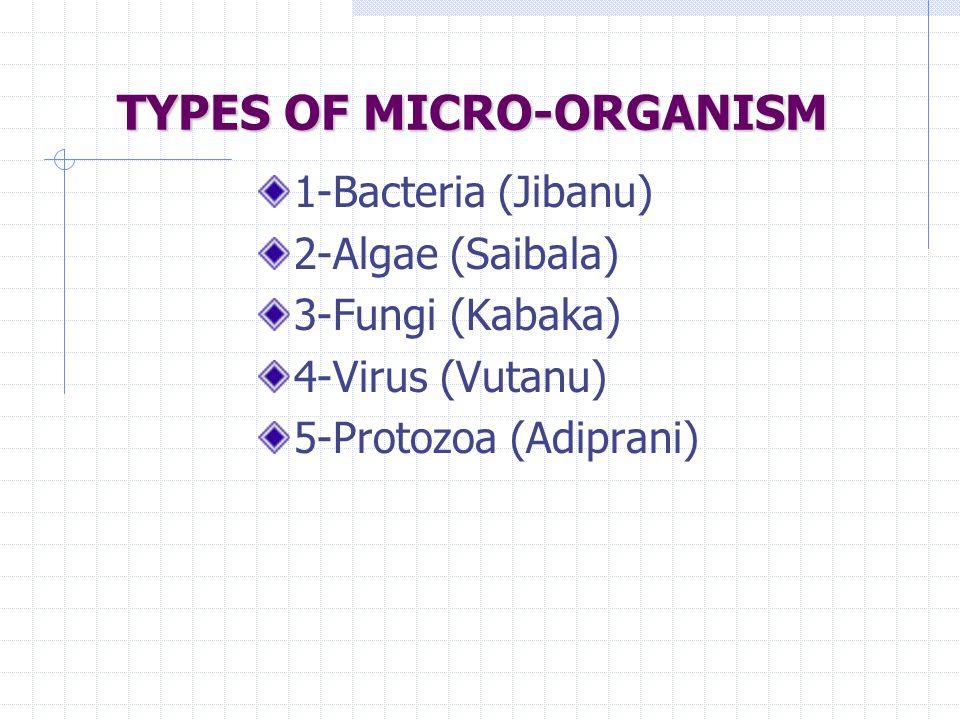 TYPES OF MICRO-ORGANISM 1-Bacteria (Jibanu) 2-Algae (Saibala) 3-Fungi (Kabaka) 4-Virus (Vutanu) 5-Protozoa (Adiprani)