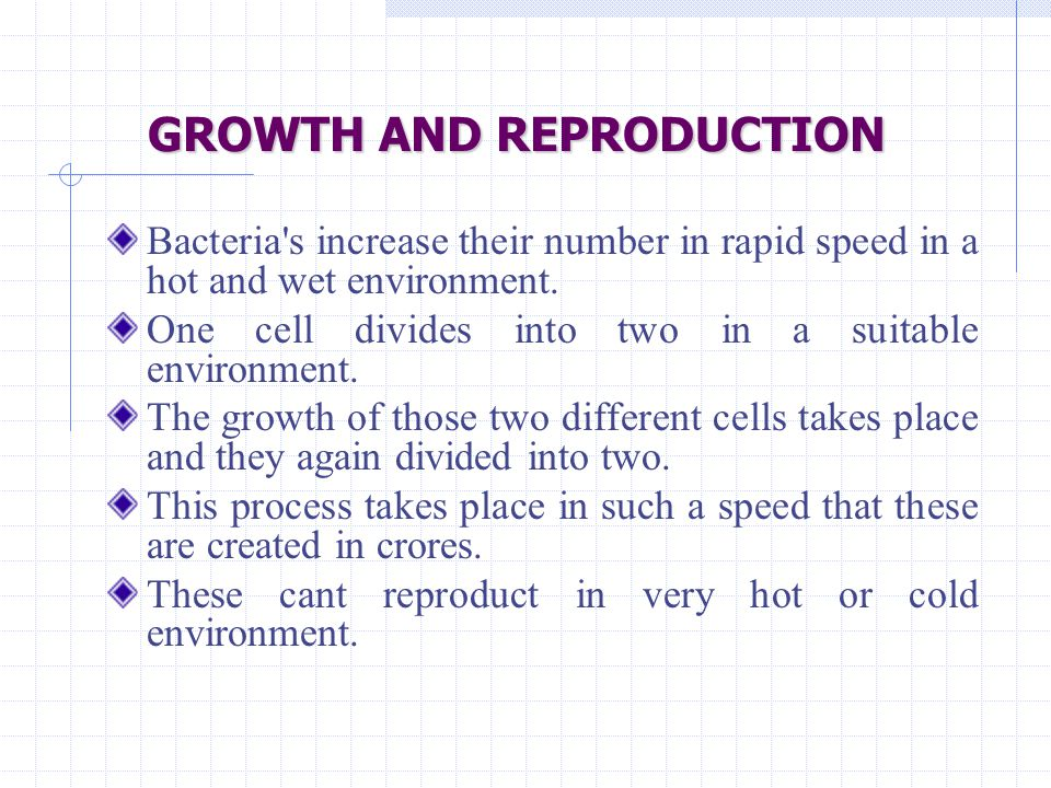 GROWTH AND REPRODUCTION Bacteria's increase their number in rapid speed in a hot and wet environment. One cell divides into two in a suitable environm