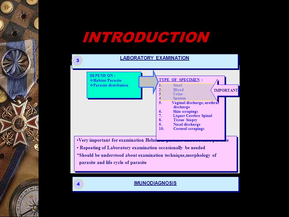 MICROSCOPIC QUALITATIVE pSTOLL DILLUTION METHOD pKATO – KATZ CELLOPHANE THICK SMEAR METHOD QUANTITATIVE EXAMINATION TECHNIQUE OF INTESTINAL HELMINTH Click Esc button When finished pDIRECT WET SMEAR METHOD pFLOTATION METHOD pMODIFICATION MERTHIOLATE IODINE FORMALDEHYDE (MIF) pCELLOTAPE TAPE METHOD pFORMALDEHYDE ETHER SEDIMENTATION (RITCHIE'S METHOD) pMETODA KATO