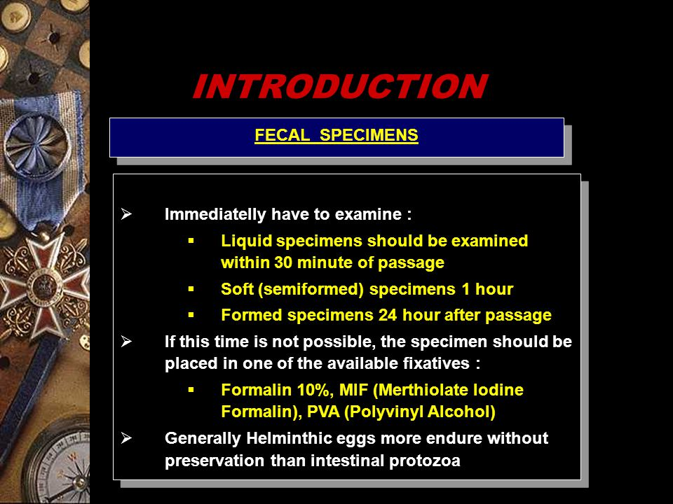 Laboratory tecknique for examination of Filaria sp.