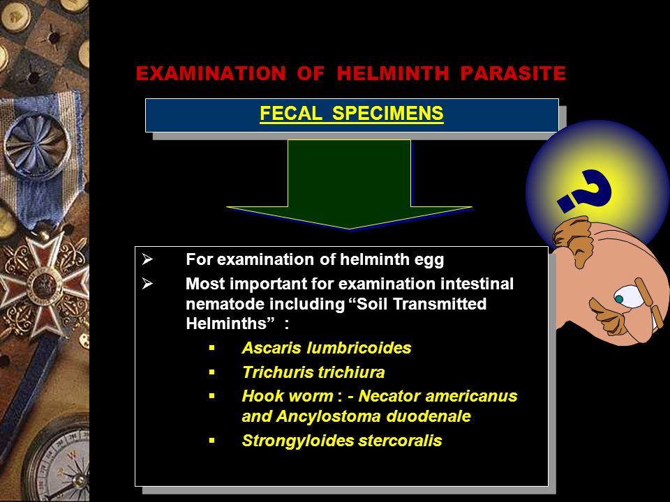 EXAMINATION OF HELMINTH PARASITE FECAL SPECIMENS .