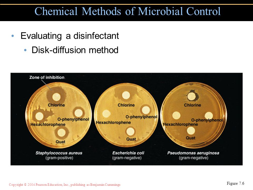 Copyright © 2004 Pearson Education, Inc., publishing as Benjamin Cummings Chemical Methods of Microbial Control Figure 7.6 Evaluating a disinfectant Disk-diffusion method