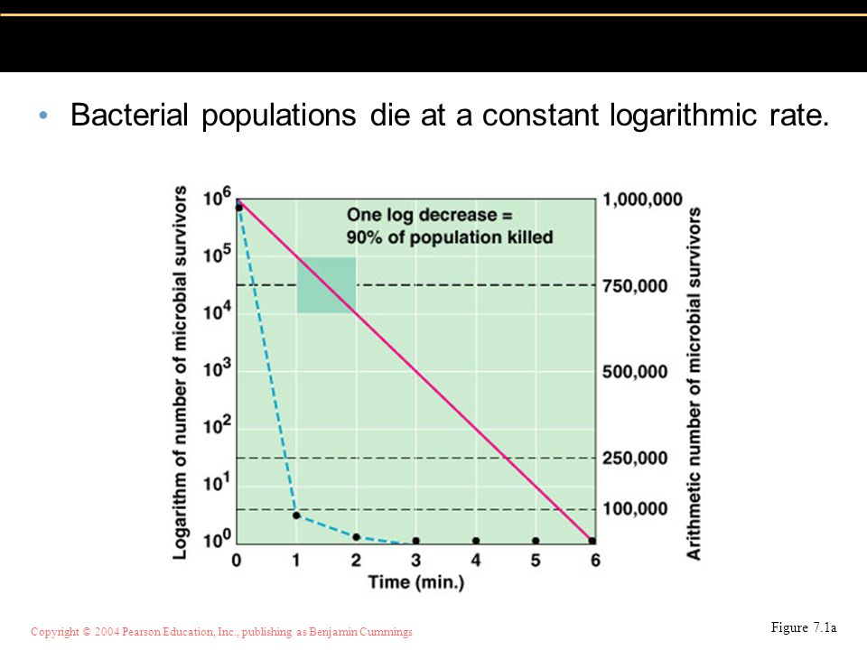 Copyright © 2004 Pearson Education, Inc., publishing as Benjamin Cummings Bacterial populations die at a constant logarithmic rate. Figure 7.1a