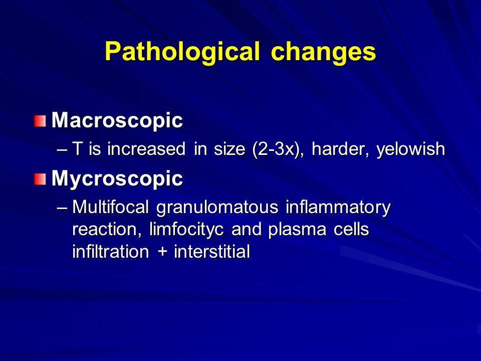 Pathological changes Macroscopic –T is increased in size (2-3x), harder, yelowish Mycroscopic –Multifocal granulomatous inflammatory reaction, limfoci