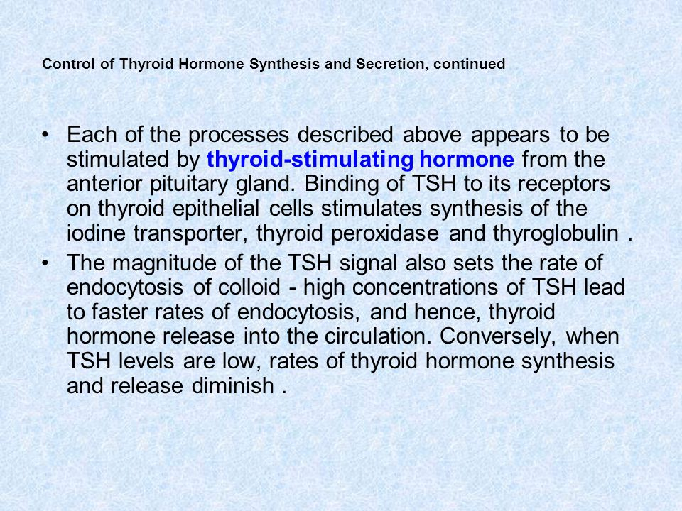 Control of Thyroid Hormone Synthesis and Secretion, continued Each of the processes described above appears to be stimulated by thyroid-stimulating ho